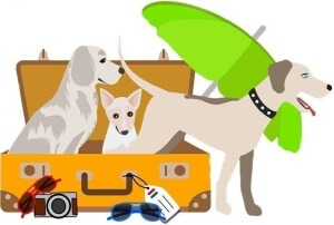 logo met je honden op vakantie